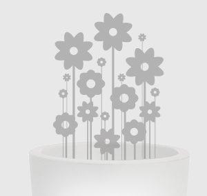 WEB_EVOlight